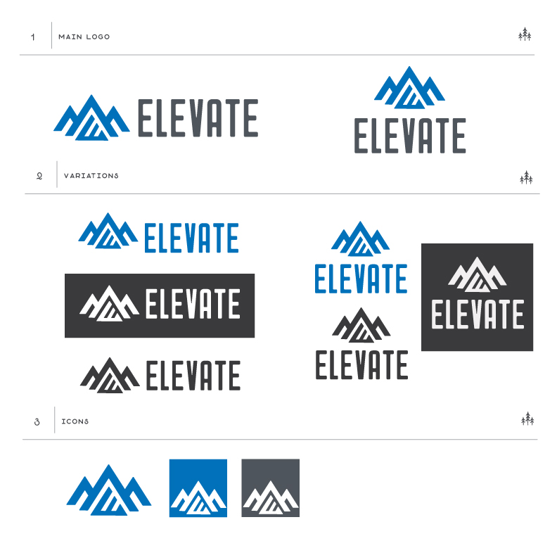 Elevate Asset Management branding, logo web design