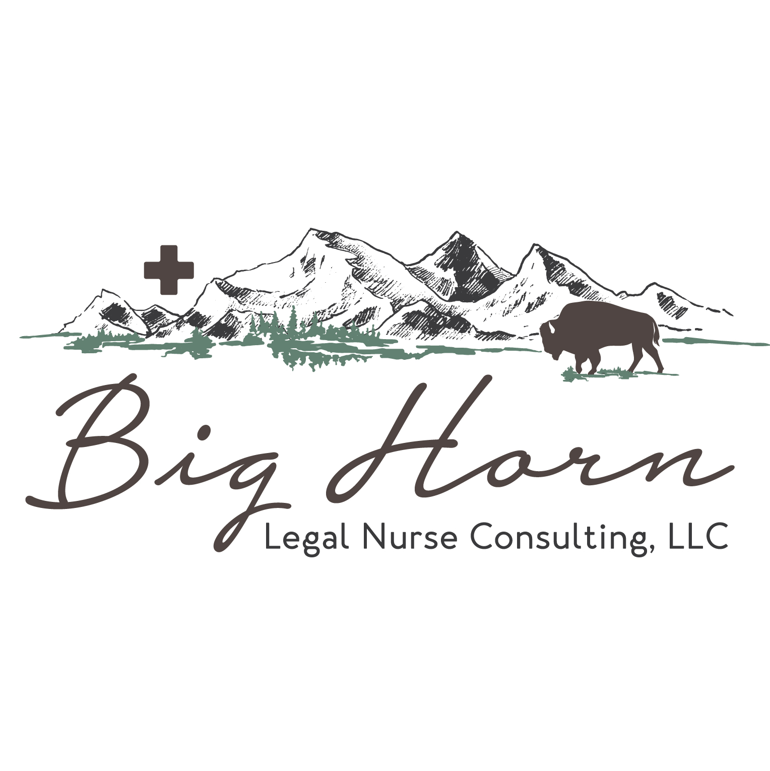 Big Horn Legal Nurse Consulting branding design
